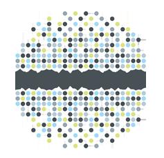 monomo